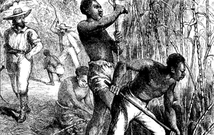 a history of plantation slavery in america A brief history of slavery in america, meant to serve as a broad overview of a very complex and intense topic.